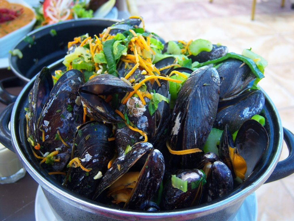 mussels-1211172_1920